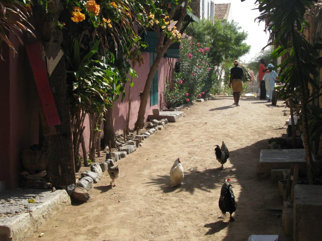 Gorée scene VIII